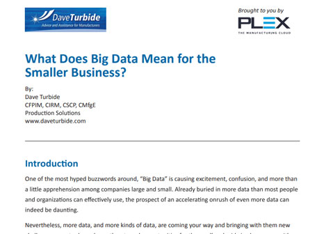 What Does Big Data Mean for the Smaller Business?